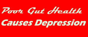 gut health and depression