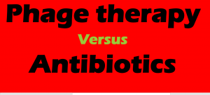 phage therapy vs antibiotic