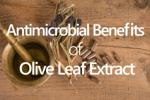 best olive leaf extract on the market